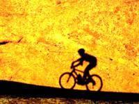 В мире собран золотой велосипед